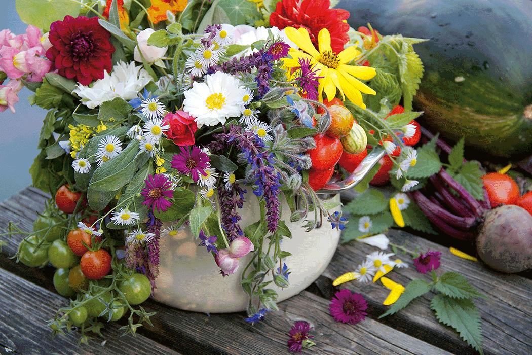 VONsociety: Dr. Christine Saahs, Covid-19, Blumen im Topf © Anna Lun