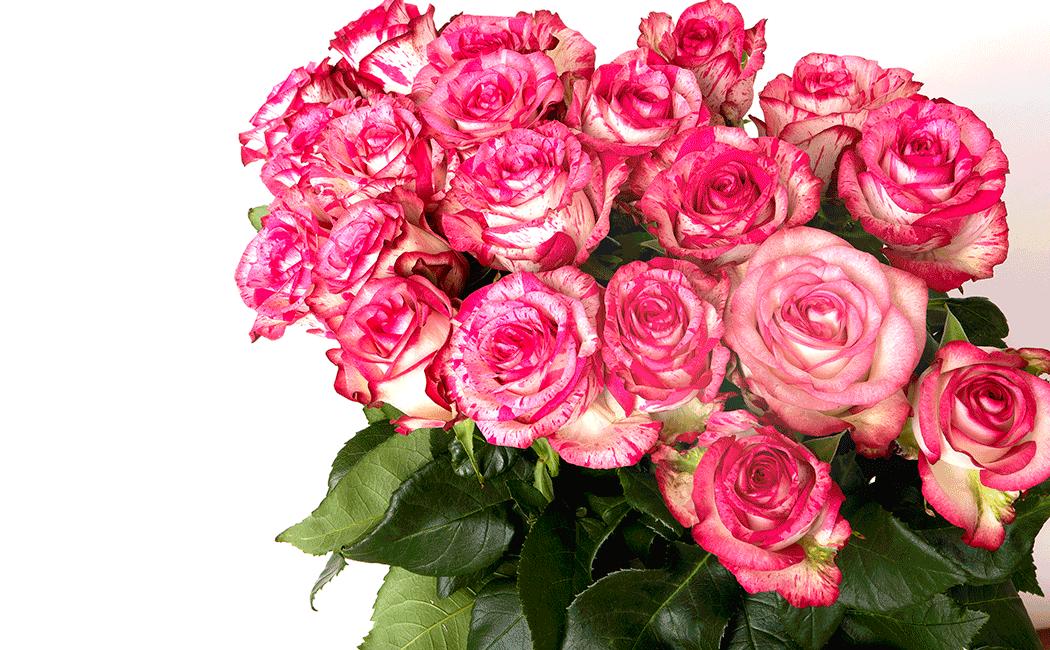 VONsociety: Muttertagsgeschenke, Rosenstrauß von Florist Zweigstelle