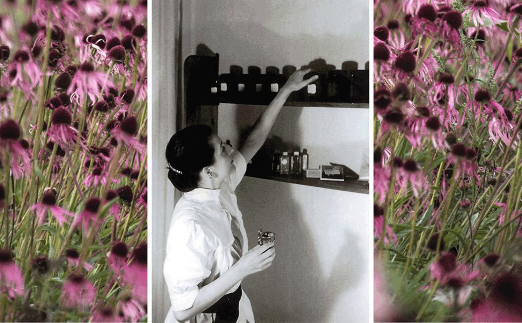 VONsociety: Elisabeth Sigmund Pionierin der Naturkosmetik. Schwarz-weiß Foto, Sigmund steht vor einem Regal mit dunklen Glasflaschen. Sie trägt ein helles Kleid. In der rechten Hand hat sie eine kleine Flasche, mit der linken greift sie zum Regel, um eine Flasche zu entnehmen © WALA Heilmittel GmbH
